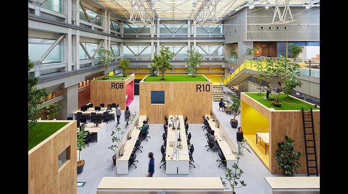 12mの天井高を生かし、建物の中に生まれた「空中庭園」